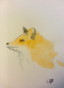 Christine Fichtner watercolour fox