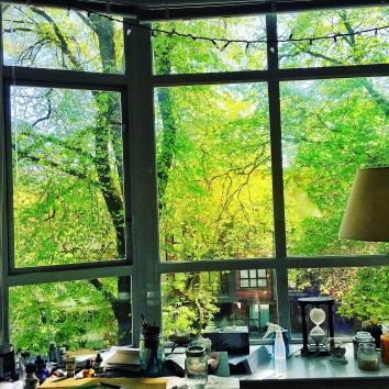 Christine Fichtenr Window