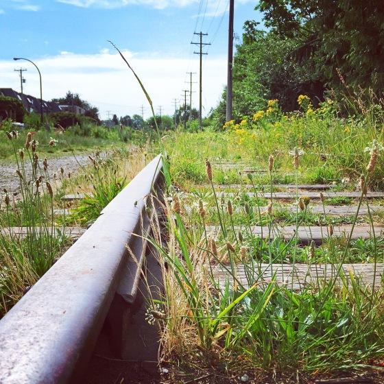 Christine Fichtner train tracks